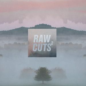 Chillhop Raw Cuts 2 album