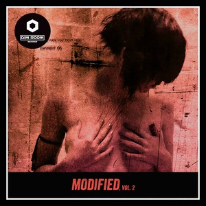 Modified, Vol. 2 Albumcover