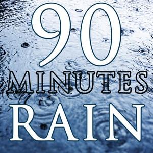 Calm Sleep (90 Minutes of Rain) Albumcover