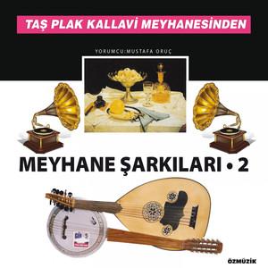Meyhane Şarkıları, Vol. 2 (Taş Plak Kallavi Meyhanesinden) Albümü