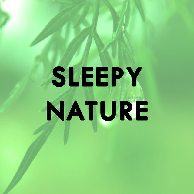 Sleepy Nature