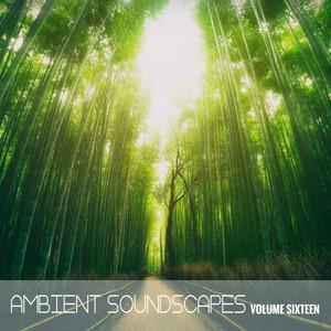 Ambient SoundScapes, Vol. 16