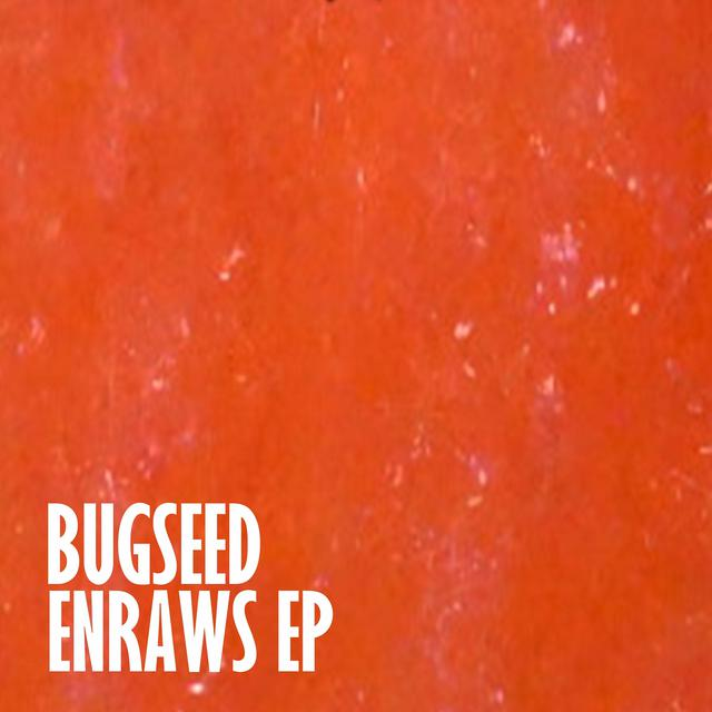 Album cover for ENRAWS EP by Bugseed