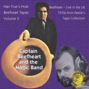 The Nan True's Hole Tapes Volume 3 (Live) album