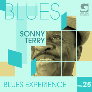 Blues Experience, Vol. 25