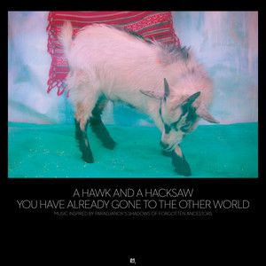 You Have Already Gone to the Other World Albumcover