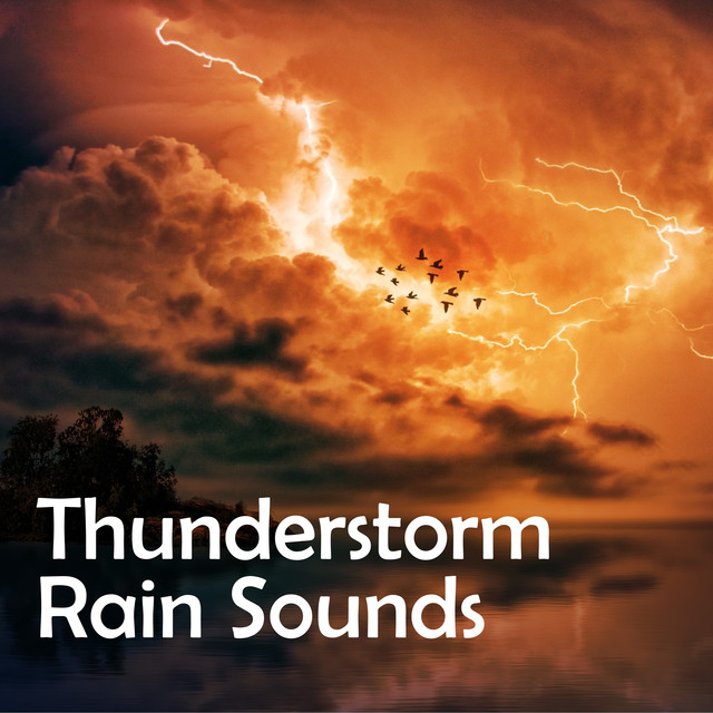 Rain Hitting Your Roof, a song by Rain Sounds & Nature