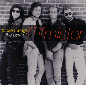Broken Wings: The Best of Mr. Mister album