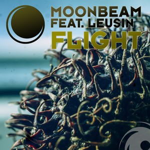 Copertina di Moonbeam - Flight (Kairo Kingdom Remix)