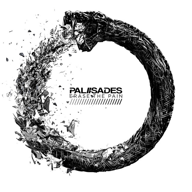 Album cover for Erase The Pain by Palisades