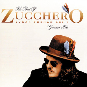 Pochette The Best Of Zucchero