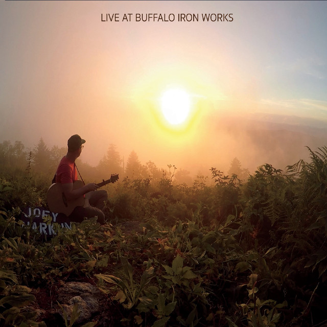 Album cover for Live at Buffalo Iron Works by Joey Harkum