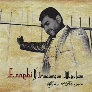 Ennebi (Umudumsun Mevlam) Albümü