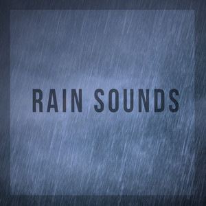 Rain Sounds album