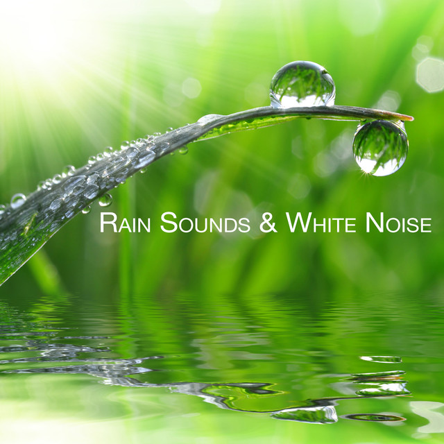 Rain Sounds Amp White Noise Listen For Free On Spotify