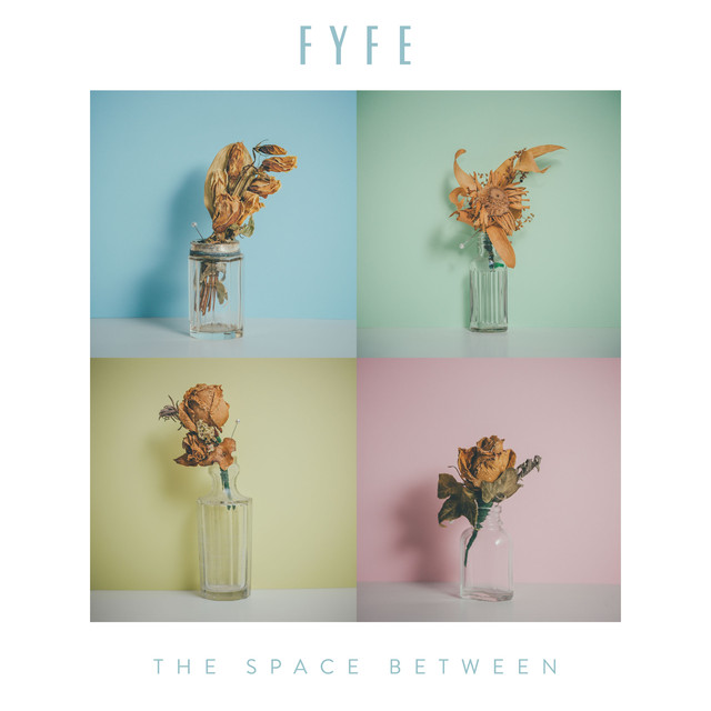 Album cover for The Space Between by Fyfe