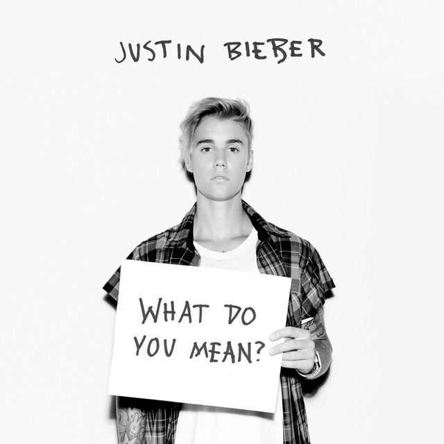 Musik Album 'What Do You Mean?'