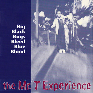 Big Black Bugs Bleed Blue Blood album