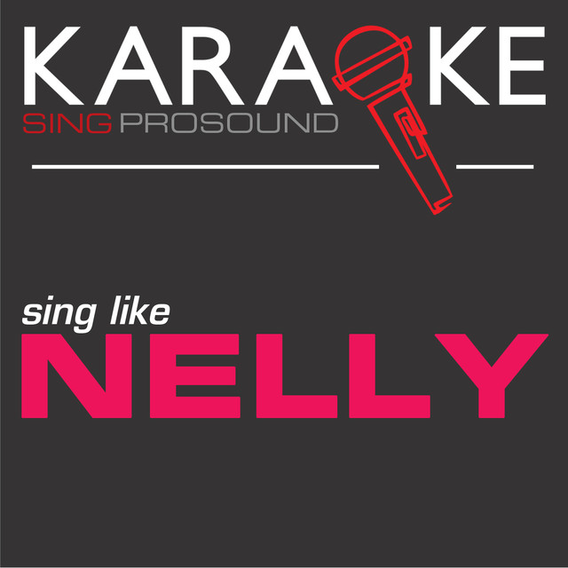Flap Your Wings (In the Style of Nelly) [Karaoke