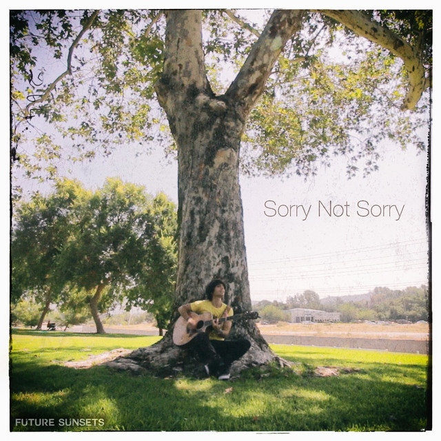 Sorry Not Sorry (Acoustic)