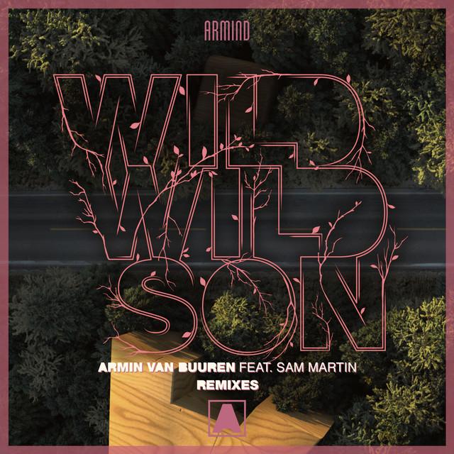 wild wild son remix