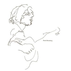 David Bromberg album