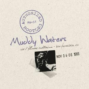 Authorized Bootleg - Fillmore Auditorium, San Francisco Nov. 4-6 1966 Albumcover