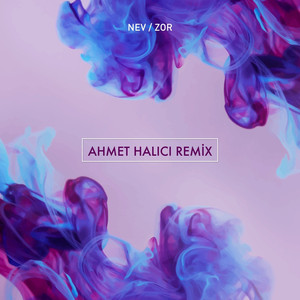 Zor (Ahmet Halici Remix) Albümü