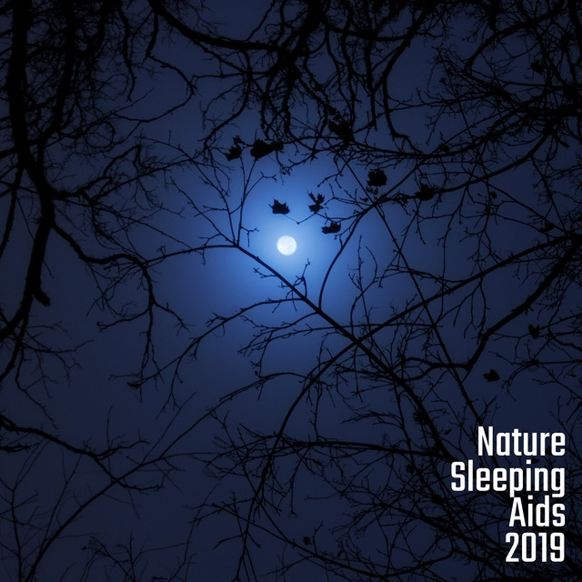 Nature Sleeping Aids 2019: Compilation of Soothing & Fully