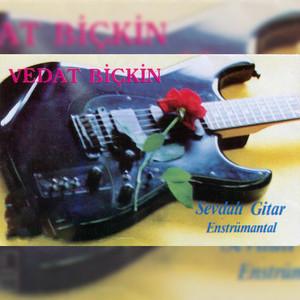 Sevdalı Gitar (Enstrümantal) Albümü