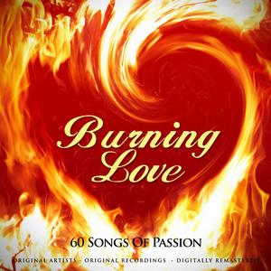 Burning Love (60 Songs of Passion) album