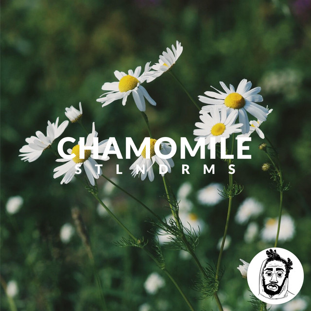 chamomile-fuck-licking-pussy-ass-panty
