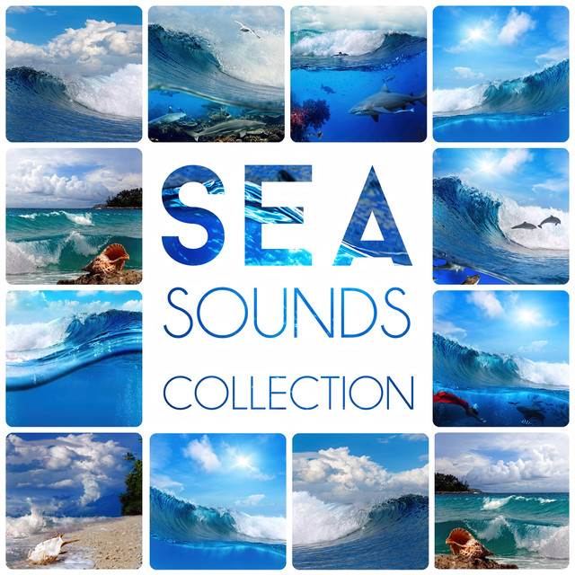 Sea Sounds Collection – Nature Sounds, Calmness, Water, Feel Good, Easy Listening, Crystal World, Waves, Spa Music Albumcover