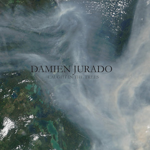 Caught In The Trees - Damien Jurado