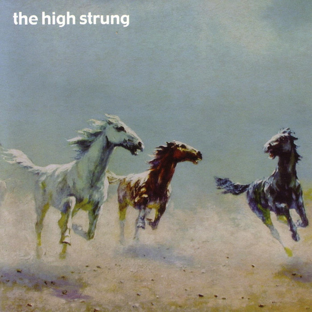 Not another word a song by the high strung on spotify for Another word for hi