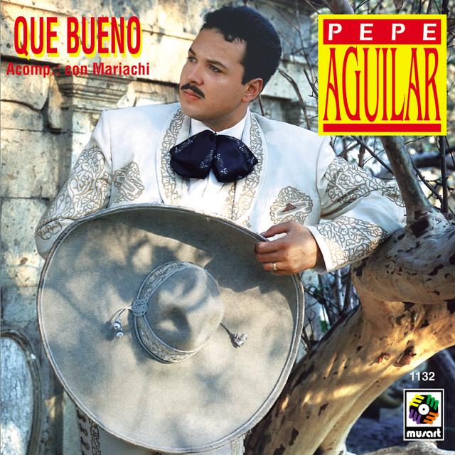 Artwork for Donde Quiera Que Tu Vayas by Pepe Aguilar