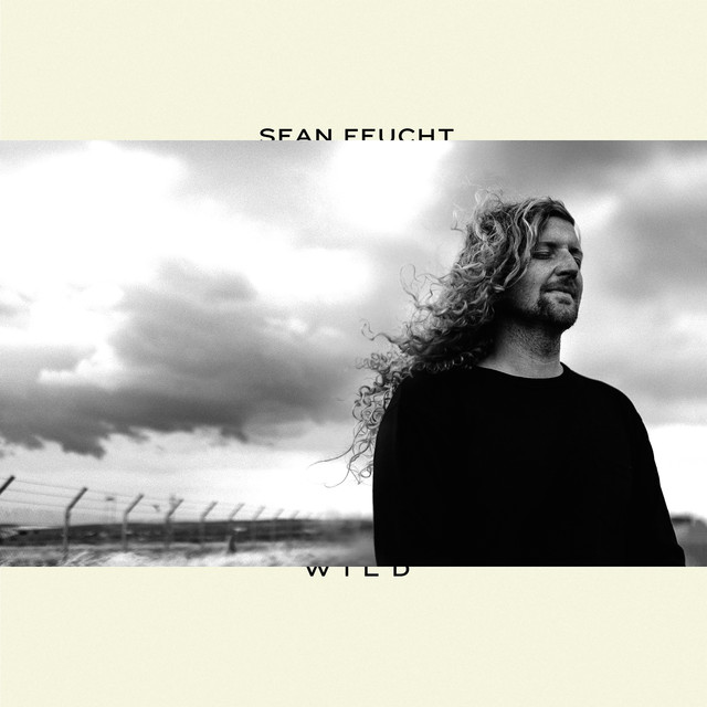 Album cover for Wild by Sean Feucht