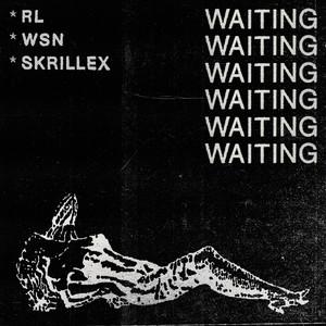 Copertina di Skrillex - Waiting