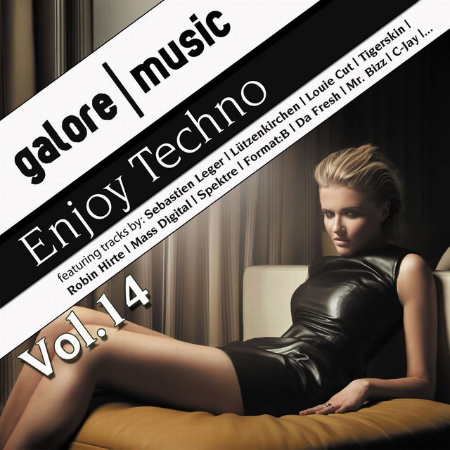 Enjoy Techno Vol. 14