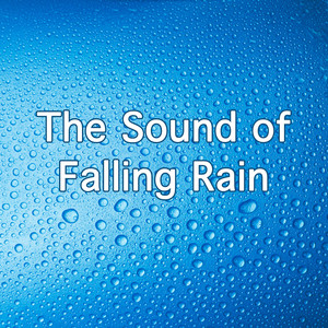 The Sound Of Falling Rain Albumcover