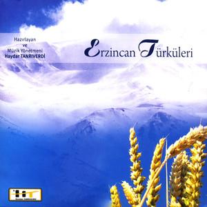 Erzincan Türküleri 2 Albümü