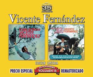 Vicente Fernández Tu Amor Soñado cover