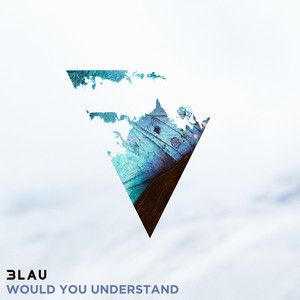 Would You Understand (feat. Carly Paige) Albümü