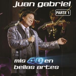 Mis 40 En Bellas Artes (En Vivo Desde Bellas Artes, México/ 2013/ Parte 1) Albumcover