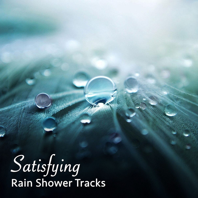 10 Minute Loopable Heavy Rain, a song by Nature Sounds, Rain