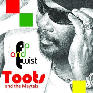 Flip And Twist album