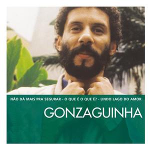 The Essential Gonzaguinha