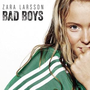 Bad Boys Albümü