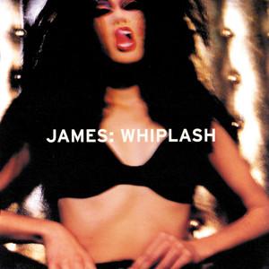 Whiplash album