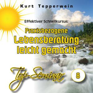 Effektiver Schnellkursus: Praxisbezogene Lebensberatung leicht gemacht (Top-Seminar Teil 8) Hörbuch kostenlos